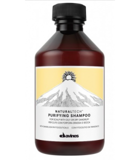Davines Naturaltech Purifying Champú 250ml